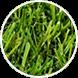 perfect artificial grass