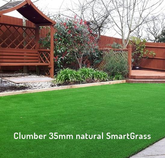 Clumber smart grass