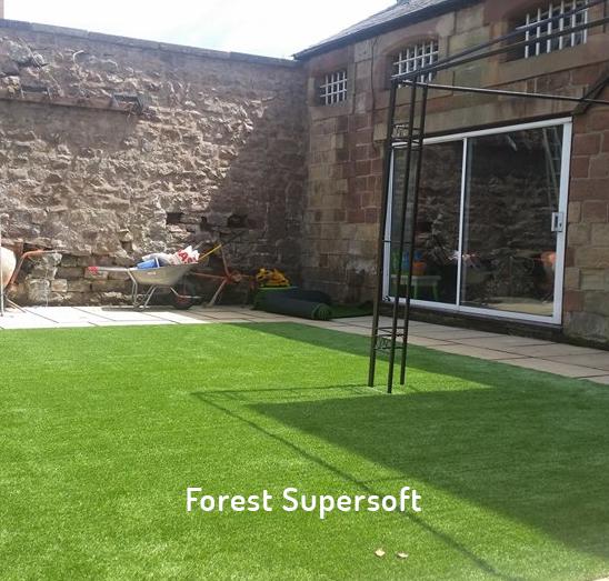 forest supersoft smartgrass